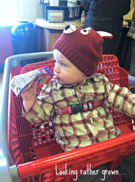 milo target cart